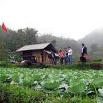 Trang trại trên núi của ông chủ người Tày