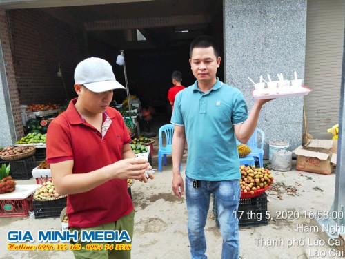sampling-mi-han-quoc-tai-tinh-lao-cai (21)